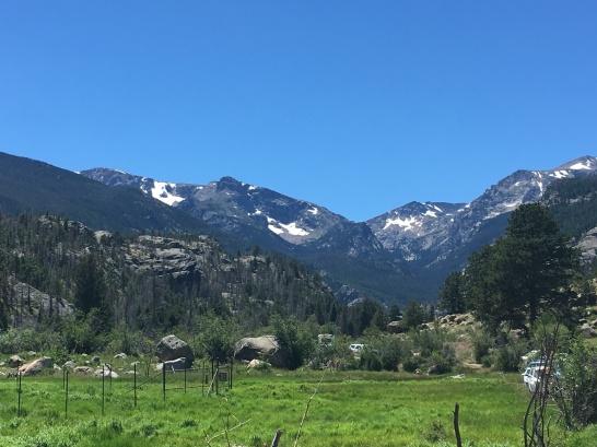 Cub Lake Trail View